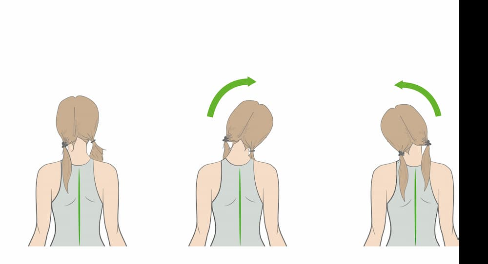 neck firming exercises, side neck release